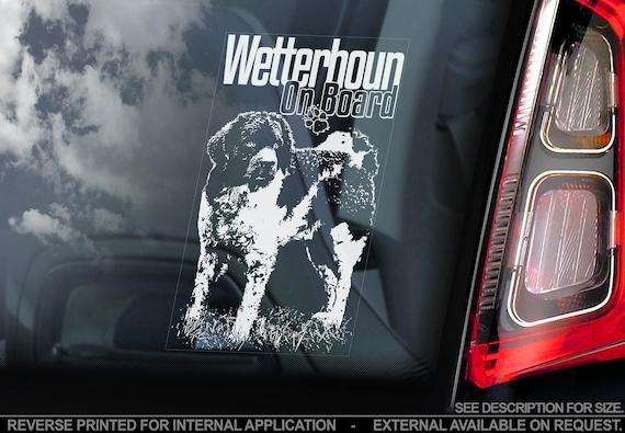 Wetterhoun - Car Window Sticker - Frisian Water Dog on Board Sign Bumper Decal - V01