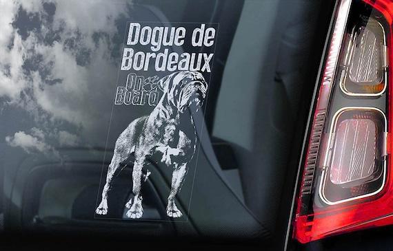 Dogue de Bordeaux on Board - Car Window Sticker - French Mastiff Sign Gift Decal - V04