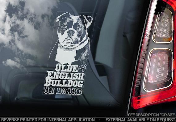 Olde English Bulldog on Board - Car Window Sticker - Old Bully Sign Bumper Decal - V03
