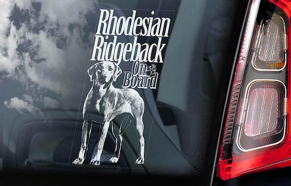 Rhodesian Ridgeback on Board - Car Window Sticker - African Lion dog Sign Decal - V02
