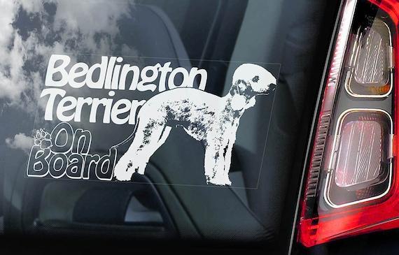 Bedlington Terrier on Board - Car Window Sticker - Rothbury Rodbery Sign Decal Art Gift - V01