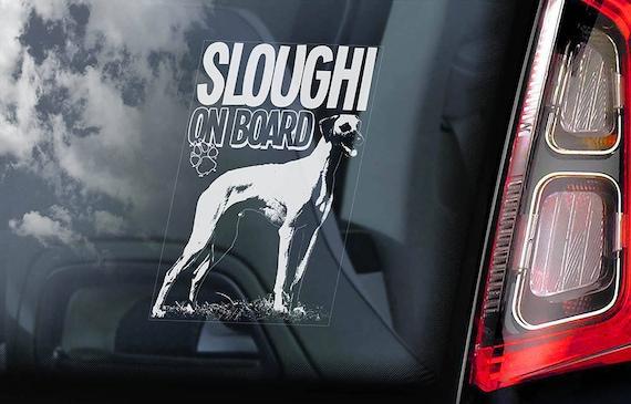 Sloughi on Board - Car Window Sticker - Berber Greyhound Dog Sign Decal Sign - V01