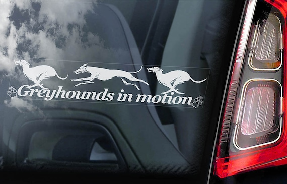 Greyhounds in Motion  - Car Window Sticker - Dog on Board Sign Decal - V03