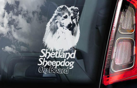 Shetland Sheepdog on Board - Car Window Sticker - Sheltie Collie Dog Sign Decal Sign - V02