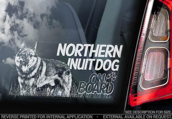 Northern Inuit Dog on Board - Car Window Sticker - Sign Decal - V01