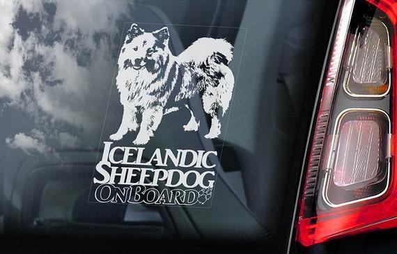 Icelandic Sheepdog on Board  - Car Window Sticker - Islandsk Spitz Dog Sign Decal  -V01