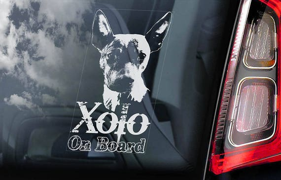 Xolo on Board - Car Window Sticker - Xoloitzcuintle Dog Sign Decal Mexican Hairless Dog Xoloitzcuintli - V01