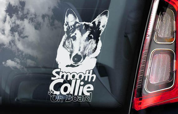 Smooth Collie - Car Window Sticker - Dog Sign Decal Sign Art Gift - V02