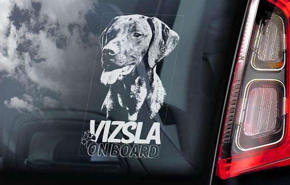 Vizsla on Board - Car Window Sticker - Magyar Hungarian Pointer Dog Sign Decal - V02