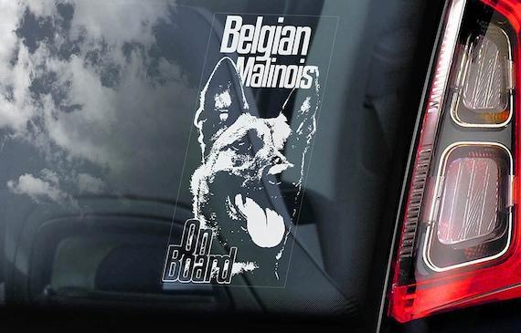 Malinois on Board - Car Window Sticker - Belgian Mechelse Herder Security K9 Dog Sign Decal  -V06