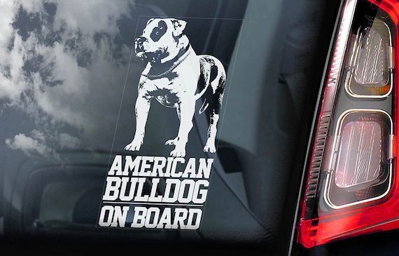 American Bulldog on Board - Car Window Sticker - Beware of the Dog Bully Scott Sign Decal  -V01
