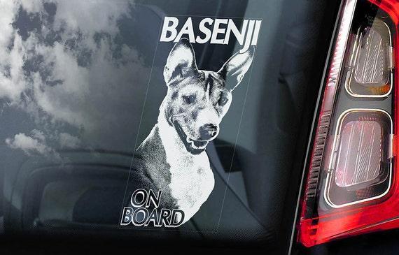 Basenji on Board - Car Window Sticker - Ango Angari African Bush Dog Sign Decal - V01