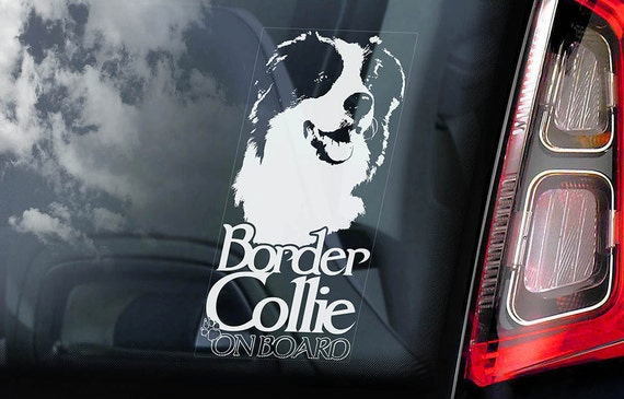 Border Collie on Board - Car Window Sticker - Dog Sign Scottish Sheepdog Decal  -V04
