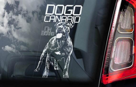 Dogo Canario on Board - Car Window Sticker - Perro de Presa Canary Mastiff Sign Gift Decal - V02