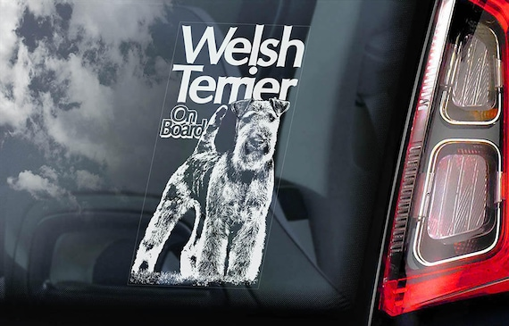 Welsh Terrier on Board - Car Window Sticker - Welshie Dog Sign Decal - V01