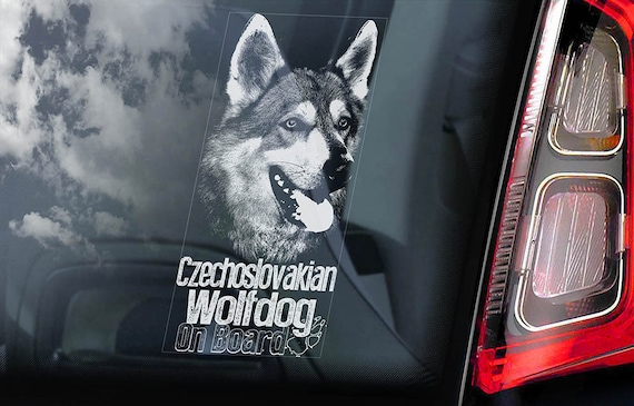 V12 Czechoslovakian Wolfdog Car Window Sticker Vlcak Wolf Dog Sign Decal