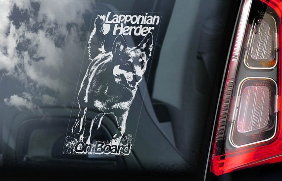 Lapponian Herder on Board - Car Window Sticker - Laplandse Lapsk Vallhund Dog Sign Decal Art Gift - V01