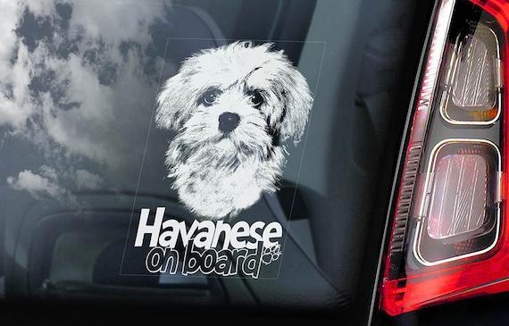 Havanese on Board - Car Window Sticker - Bichon Habanero Dog Sign Decal - V01