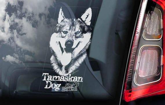 Tamaskan Dog on Board - Car Window Sticker - Tam Husky Sign Decal - V03