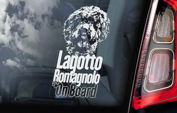 Lagotto Romagnolo on Board - Car Window Sticker - Romagna Water Dog Sign Decal - V01