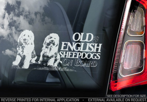Old English Sheepdogs on Board - Car Window Sticker - Shepherds Dog Sign Bumper Decal - V02