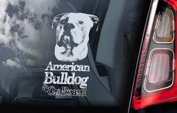 American Bulldog on Board - Car Window Sticker - Beware of the Dog Bully Scott Sign Decal  -V05