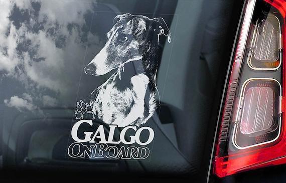 Galgo on Board - Car Window Sticker - Español Dog Spanish Greyhound Espanol Sign Decal -V02