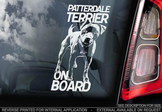 Patterdale Terrier on Board - Car Window Sticker - Dog Sign Decal Gift Art - V01