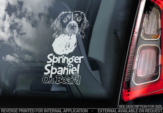 Springer Spaniel on Board - Car Window Sticker - English Dog Sign Decal - V06
