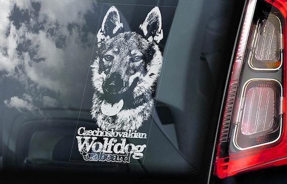 Czechoslovakian Wolfdog on Board - Car Window Sticker - Vlcak Cane Lupo Cecoslovacco Sign Decal - V08