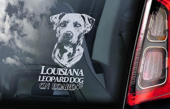 Louisiana Leopard Dog on Board - Car Window Sticker -  Cur Catahoula Hound Sign Decal - V01