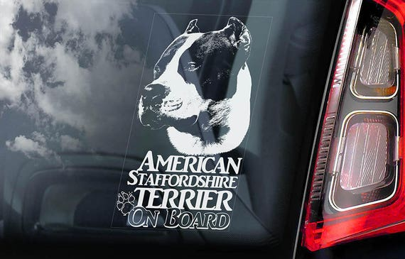 V02 Dog Window Sign Decal Gift Pet AMERICAN STAFFORDSHIRE TERRIER Car Sticker