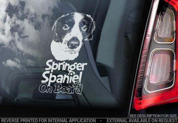 Springer Spaniel on Board - Car Window Sticker - English Dog Sign Decal - V07