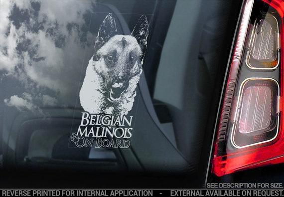 Belgian Malinois on Board - Car Window Sticker - Mechelse Herder Security K9 Dog Sign Decal - V26