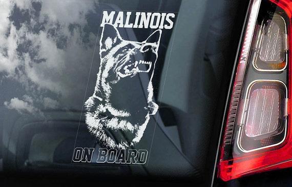 Malinois on Board - Car Window Sticker - Belgian Mechelse Herder Security K9 Dog Sign Decal  -V03