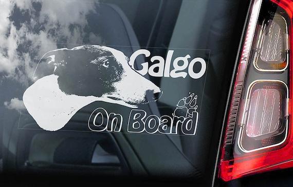 Galgo a bordo auto adesivo finestra espa ol cane levriero - Finestra in spagnolo ...