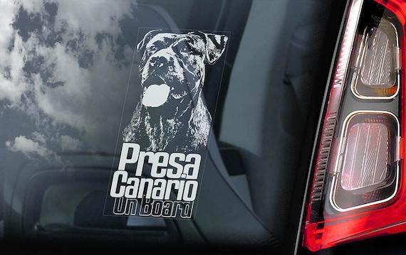 Presa Canario on Board - Car Window Sticker - Dogo Canary Mastiff Dog Sign Decal - V05