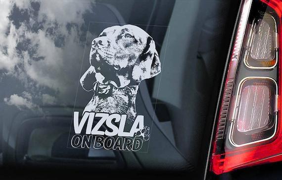 Vizsla on Board - Car Window Sticker - Magyar Hungarian Pointer Dog Sign Decal - V07