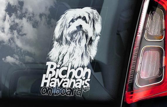 Bichon Havanais on Board - Car Window Sticker - Havanese Frise Dog Sign Decal Art Gift - V01