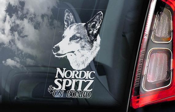 Nordic Spitz on Board - Car Window Sticker - Norrbottenspets Dog Sign Decal - V01