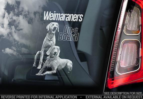 Weimaraners on Board - Car Window Sticker - Weimaraner Dog Sign Bumper Decal - V05