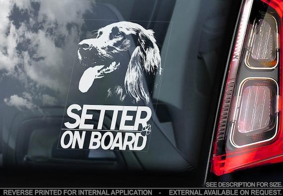 Irish Setter on Board  - Car Window Sticker - Irish Red Dog Sign Decal  -V01