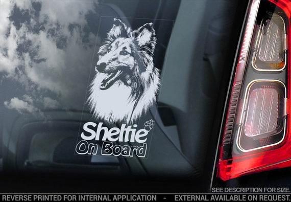 Sheltie on Board - Car Window Sticker - Shetland Sheepdog Collie Dog Sign Decal Sign - V03