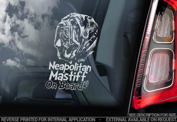 Neapolitan Mastiff on Board - Car Window Sticker - Mastino Napoletano Dog Sign Decal - V03
