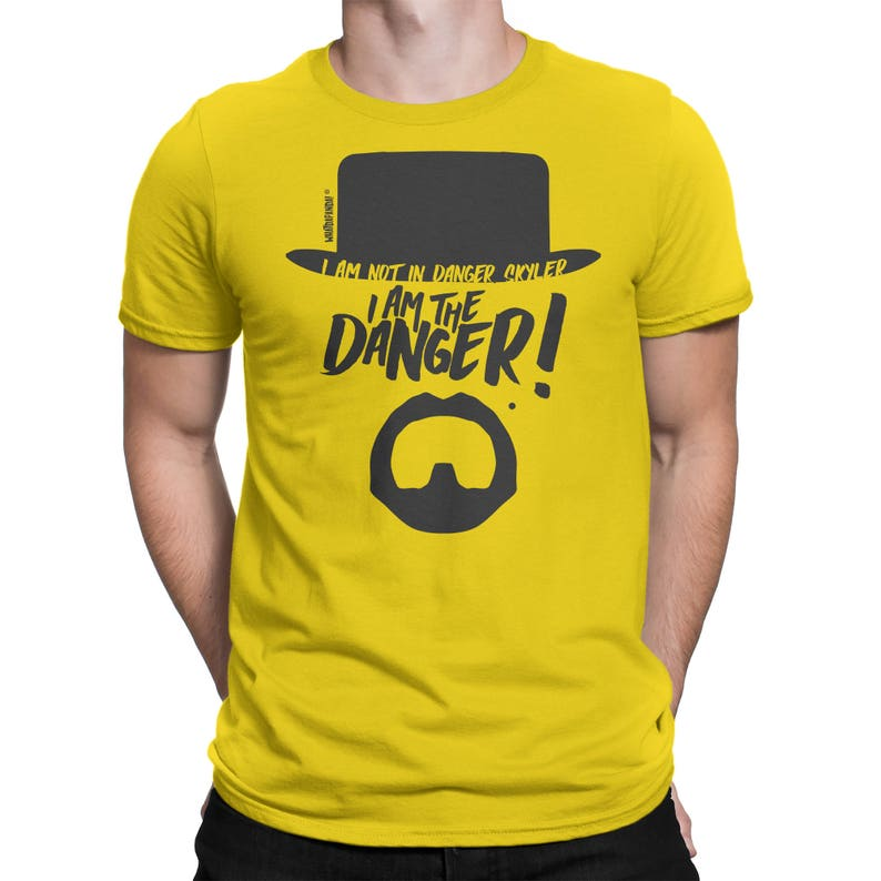 Breaking Bad  I am not in danger Skyler. I am the danger image 0