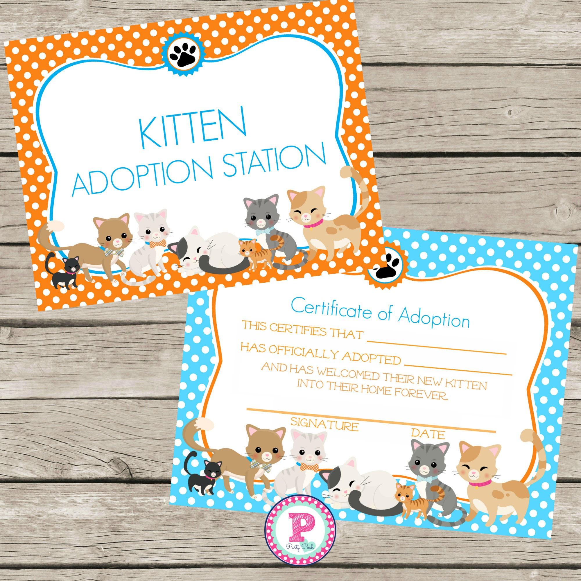 kitten adoption certificate birthday party polka dot kitten etsy