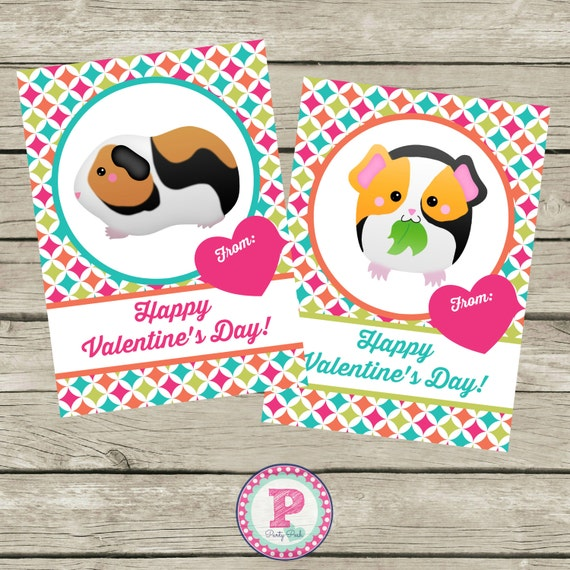 Kid Valentine's Day Cards Guinea Pig Hamster Instant