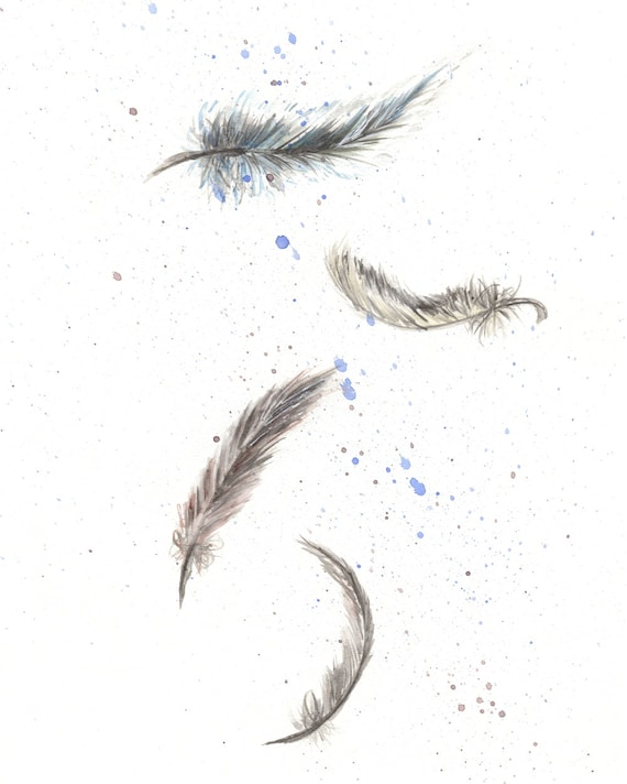 original watercolor painting feather falling feathers bird etsy