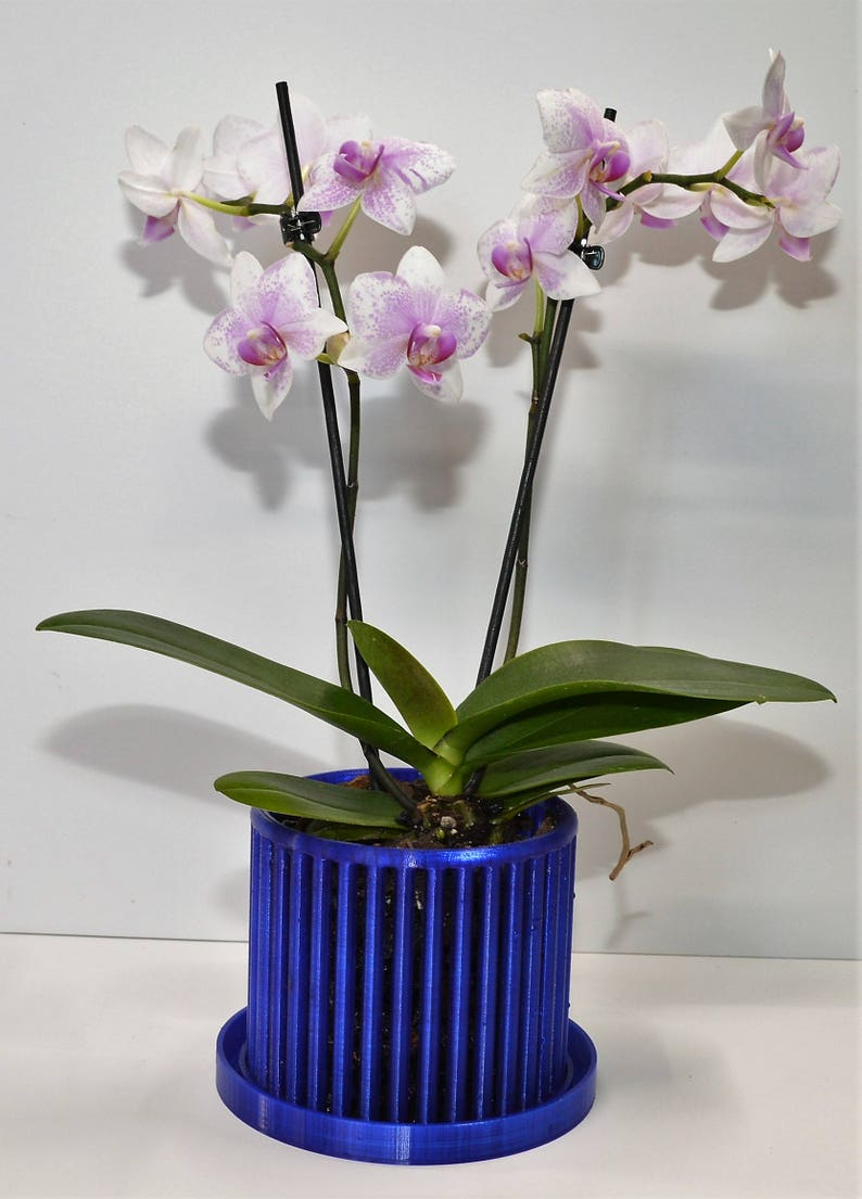 Carousel Orchid Pots with Drip Trays image 0