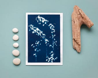 """Original cyanotype """"Bridal wreath"""" on bulky drawing paper in DIN A5 format"""